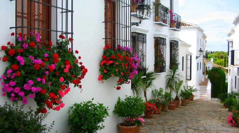 come decorare un balcone con fiori